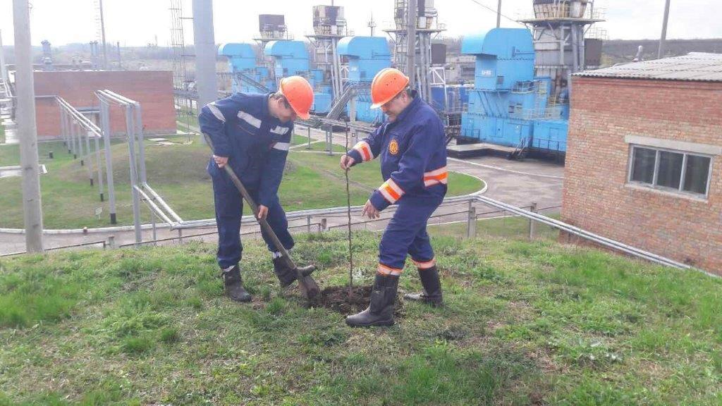 Працівники ПАТ «Укргазвидобування» взяли участь у масштабному заході – «День довкілля»